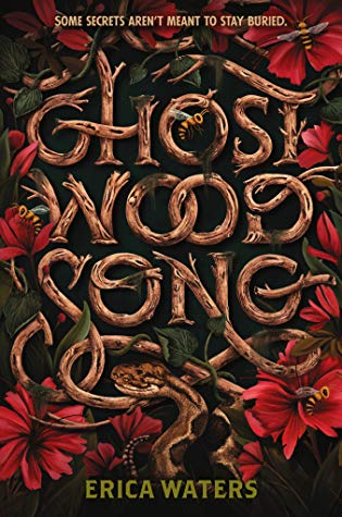 REVIEW: GHOST WOOD SONG by Erica Waters